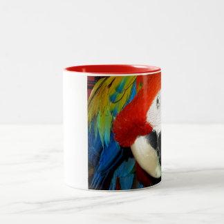 Macaw curioso taza de dos tonos