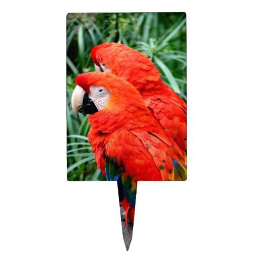 Macaw de Scalet Figuras De Tarta