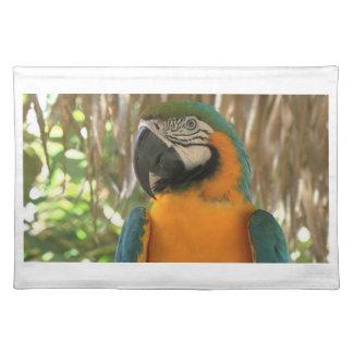 Macaw del Amazonas Mantel Individual