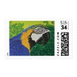 Macaw del azul y del oro sello