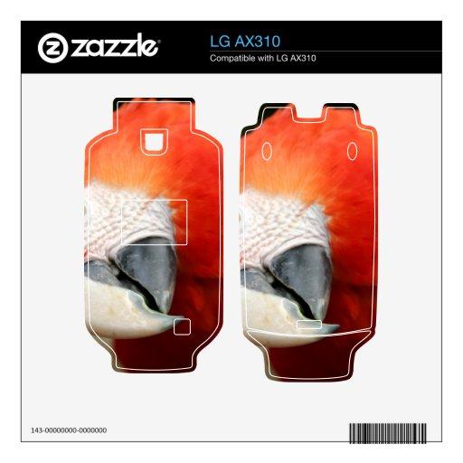 Macaw del escarlata calcomanía para LG AX310