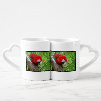 Macaw del escarlata con un pico agudo tazas amorosas