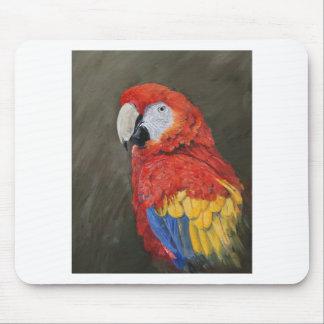 Macaw del escarlata creado para usted tapetes de raton