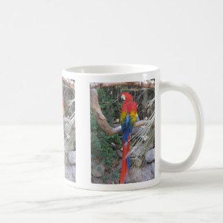 Macaw del escarlata - de la parte posterior taza clásica