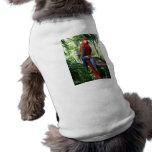 Macaw del escarlata, diseño rojo del photograp del camiseta de mascota
