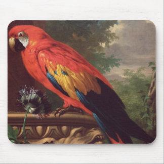 Macaw del escarlata en un paisaje (aceite en lona) alfombrilla de raton