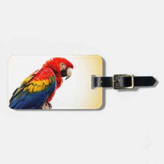 Macaw del escarlata etiqueta para maleta