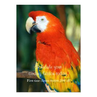 """Macaw del escarlata invitación 5.5"""" x 7.5"""""""