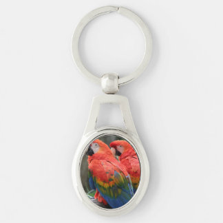 Macaw del escarlata llavero plateado ovalado