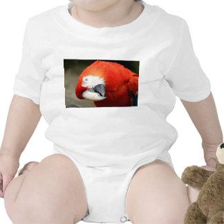 Macaw del escarlata camiseta