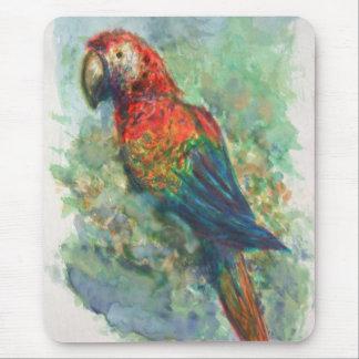 Macaw del escarlata tapete de raton