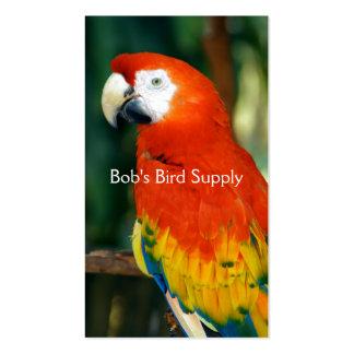 Macaw del escarlata tarjetas de visita