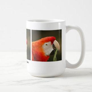 Macaw del escarlata taza clásica