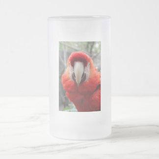 Macaw del escarlata taza de cristal