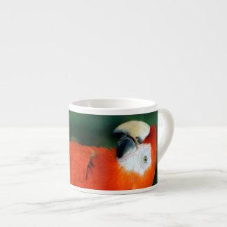 Macaw del escarlata taza espresso