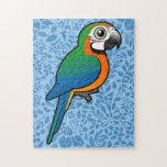 Macaw del Harlequin Puzzle Con Fotos