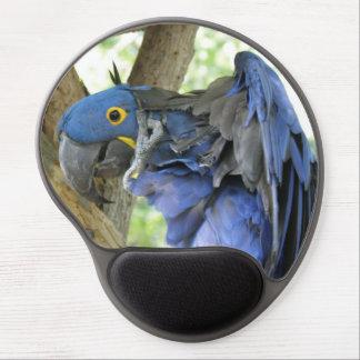 Macaw del jacinto alfombrilla de raton con gel