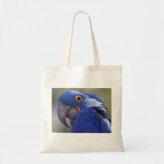 Macaw del jacinto bolsa