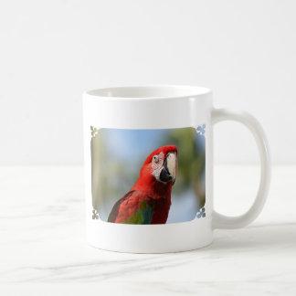 Macaw del rojo del escarlata taza