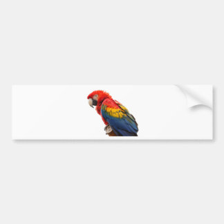 """""""Macaw"""" design gifts and products Bumper Sticker"""