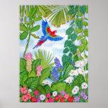 Macaw en vuelo póster