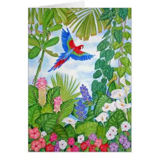 Macaw en vuelo tarjeta de felicitación
