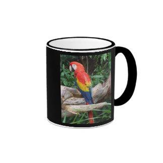 Macaw escénico del escarlata taza