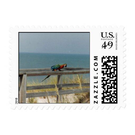 Macaw (franqueo)