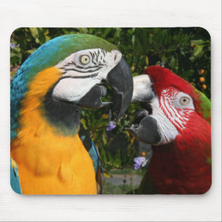 Macaw Friends Mousepad