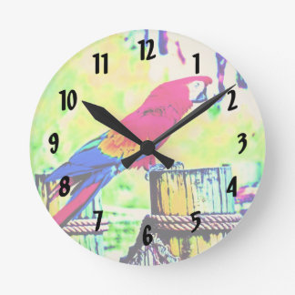 macaw hdr saturated bird image vignetted round clock
