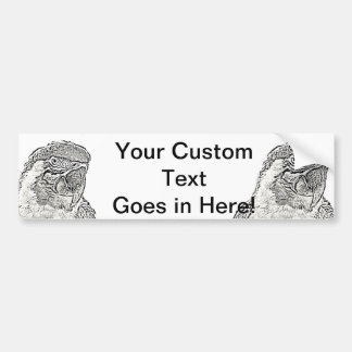 macaw head view graphic outline parrot bumper sticker