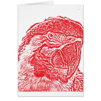 macaw head view graphic red outline parrot card