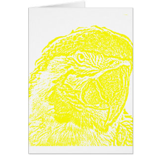 macaw head view graphic yellow outline parrot card
