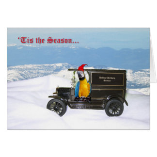 Macaw Holiday Delivery Greeting Card