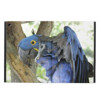 Macaw iPad Air Case