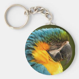macaw key chains