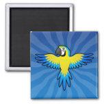 Macaw/loro del dibujo animado imán cuadrado