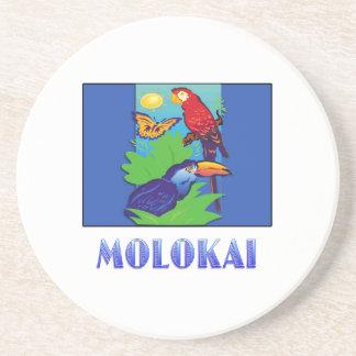 Macaw loro mariposa y selva MOLOKAI Posavasos Personalizados
