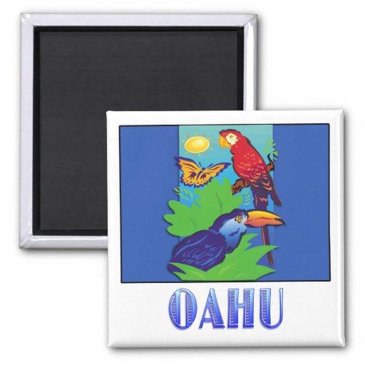 Macaw, loro, mariposa y selva OAHU Imán De Frigorífico