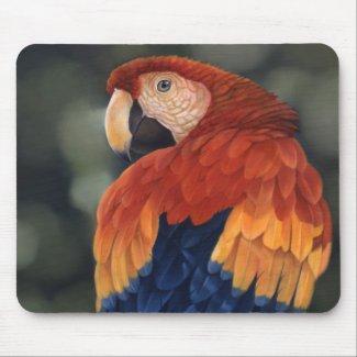 Macaw Mousemat zazzle_mousepad