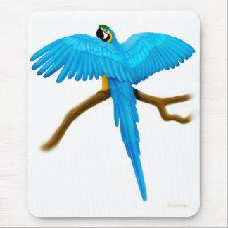Macaw Mousepad del azul y del oro