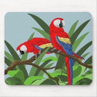 Macaw Mousepads del escarlata