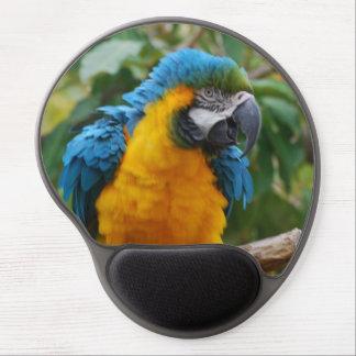 Macaw mullido del azul y del oro alfombrilla con gel