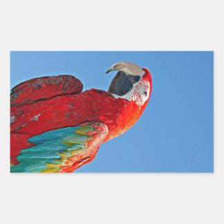 Macaw multicolor pegatina rectangular