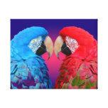 Macaw o loro colorido lienzo envuelto para galerias
