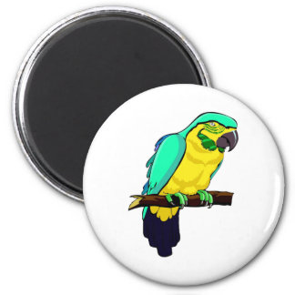 Macaw On Branch Magnet
