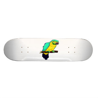 Macaw On Branch Skateboard