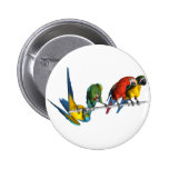 Macaw Parrot 2 Inch Round Button
