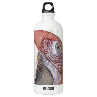 Macaw Parrot Antique Style Sketch SIGG Traveler 1.0L Water Bottle