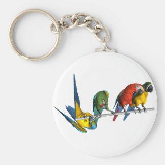 Macaw Parrot Basic Round Button Keychain